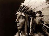 Native Life