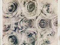 Les fleur