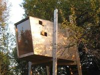 architecture: treehouses...