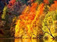 Autumn Loveliness
