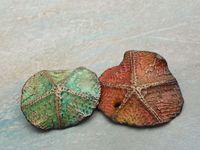 GREYBIRDSTUDIO BEADS / Artisan Beads I make and sell via my etsy shop greybirdstudio.