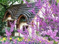 1000 Images About Enchanted Cottage On Pinterest