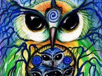 Owl Graficos