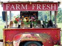Good ideas for Market Gardeners.