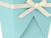 Tiffany blue ~ one of the loveliest colors