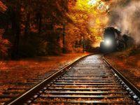 Tracks. &. Trains