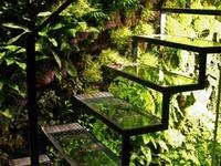 Home / Stairways