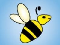 Joyce Factory Direct Bee Bee Imagine Cuyahoga County