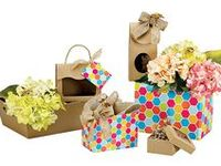 Our Gift Packaging / BoxCo Industries® specializes in the design and manufacturing of theme-oriented gift and gourmet food packaging products. Our product range includes Gift Basket Boxes, Gourmet Gift Boxes, Nested Gift Boxes, Gable Boxes, Market Trays, Sweet Treat Boxes and other coordinating gift packaging products.