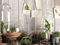 : Indoor Green :