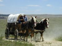 WAGONS, CARTS,COACHES, CARRIAGES