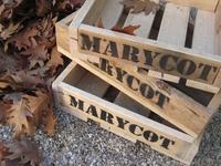productos Marycot
