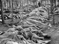 War...WWII...Holocaust,Concentration camps