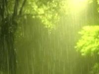 Rainy Days & Mondays....