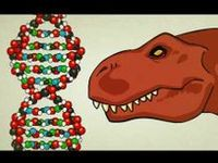 Ag Biology - DNA, RNA & Protein Synthesis