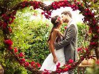 photography ~ wedding