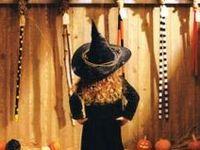 halloween / fantasy fest