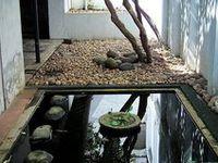 Garden - Roofs & Patios