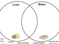 60 best Phy Sci 5 acids bases and solutions images on
