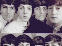 Beatle bugsss