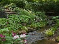 images about Gardens in the Woods on Pinterest