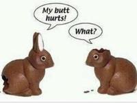 Bunnies, Bunnies, and more Bunnies!