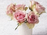 FLOWERS ~ PINK ROSES
