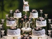 Wedding Cakes Plus
