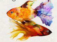 Watercolor Fish, Shells, & Corals