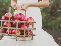 wedding inspiration: fall
