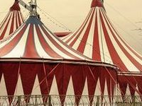 """""""Something about the circus stirs their souls, and they ache for it when it is absent."""""""