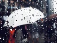 Rain | Дождь / raindrops|the rain outside the window