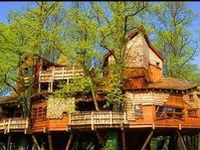 Here are some incredible tree house designs that range from functional to fanciful, sustainable to strange and affordable to incredibly expensive.