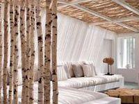 twigs, branches, logs & sticks