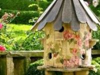 Bird Cages & Houses