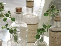 Transparence ... Bouteilles & Cloches