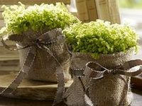 Gifts on pinterest doterra homemade bath salts and essential oils