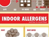 10 Best Indoor Air Pollution Images On Pinterest