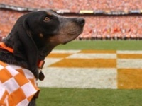 It's good . . . to be . . . a Tennessee Vol!!!!!  Go Big Orange!!!!!  VFL!!!!!!!!!!