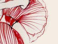 1000+ images about Modeillustrationen on Pinterest