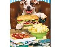 Pet care & Homemade Dog treats & more!!
