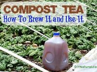 Composting & Worms..Amending your Soil