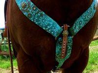 Horse Tack!