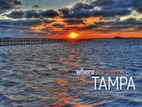 All Things Tampa