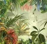 Komar - fotobehang 'Illusions 2'