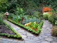 Paths and steps in Garden.  See also 'Garden Floor', 'Stunning Stone' and 'Pebble Mosaics'