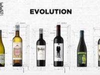 The Wine Gurus / 6 vinos, 6 uvas,6 denominaciones de origen: The Wine Gurus, by Casa Rojo