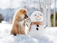 """Let It Snow, Let It Snow, Let It Snow  """"Time for comfort, for good food and warmth, for the touch of a friendly hand and for a talk beside the fire: it is the time for home."""""""
