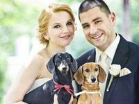 How to include your fur friend on the big day