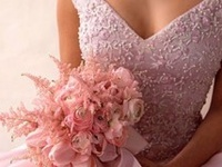 Wedding Dresses / Gowns